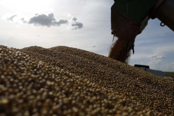 Depois de perder a posição e admitir a liderança do Brasil no ciclo anterior, os norte-americanos voltaram a exportar mais soja que o Brasil. | Jonathan Campos/Gazeta do Povo
