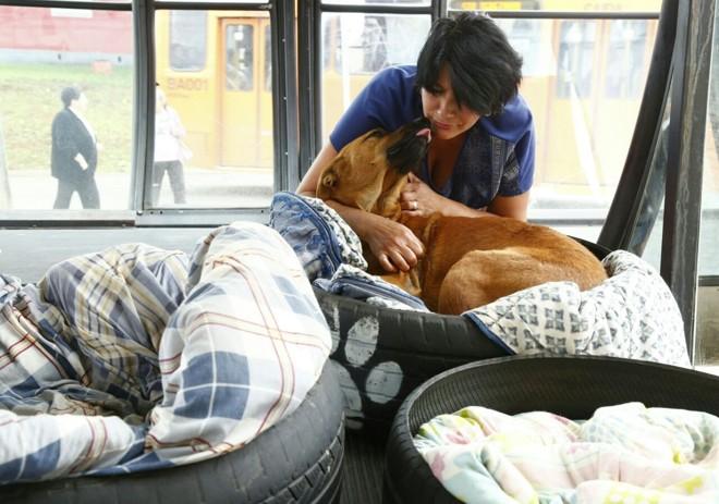 A segurança Neuza dos Santos  brinca com o cachorro Max: carinho retribuído. | Aniele Nascimento/Gazeta do Povo