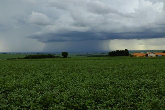 Excesso de chuvas e  secas, combinadas com a desvalorização dos grãos, resultaram em quase R$200 milhões em indenizações para o seguro rural do BBMapfre | Arquivo/Gazeta do Povo