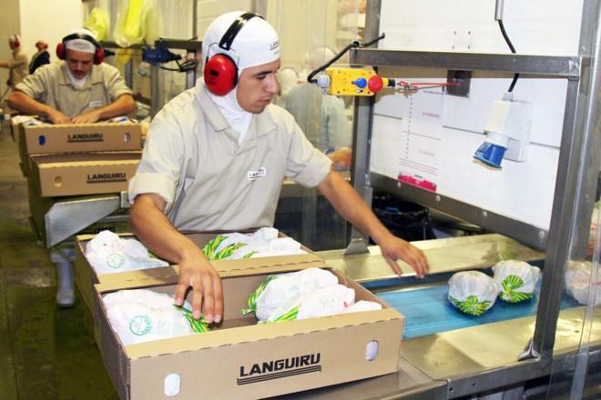 Cooperativa Languiru, de Teutônia: modelo d e negócios reestruturado antes da crise | Gérson Klaina/Gazeta do Povo