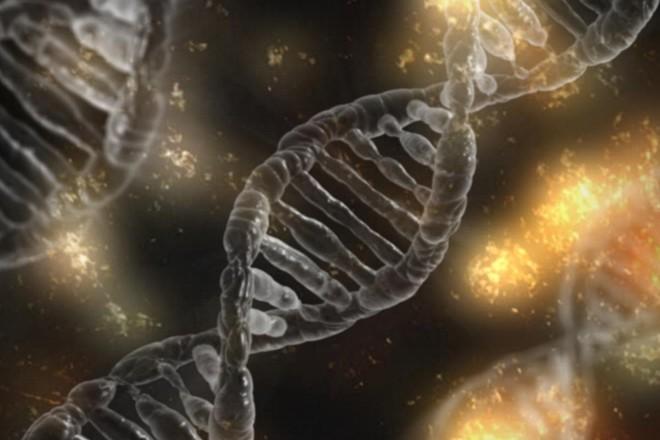 DNA: edição genética ainda desperta inúmeras controvérsias | Pixabay