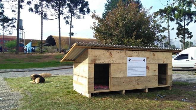 A casinha de madeira foi preparada para abrigar os cães que se escondiam na Unidade de Pronto Atendimento  (UPA) do Pinheirinho | Raquel Derevecki/Gazeta do Povo