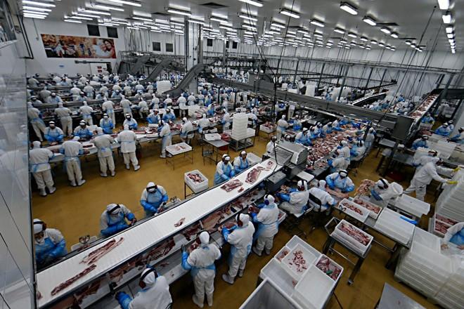 Frigorífico da Frimesa em Medianeira tem mais de 4 mil funcionários | Albari Rosa/Gazeta do Povo