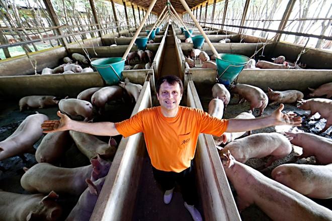 Jorge Rambo aproveitou a crise para adquirir  novas granjas | Albari Rosa/Gazeta do Povo