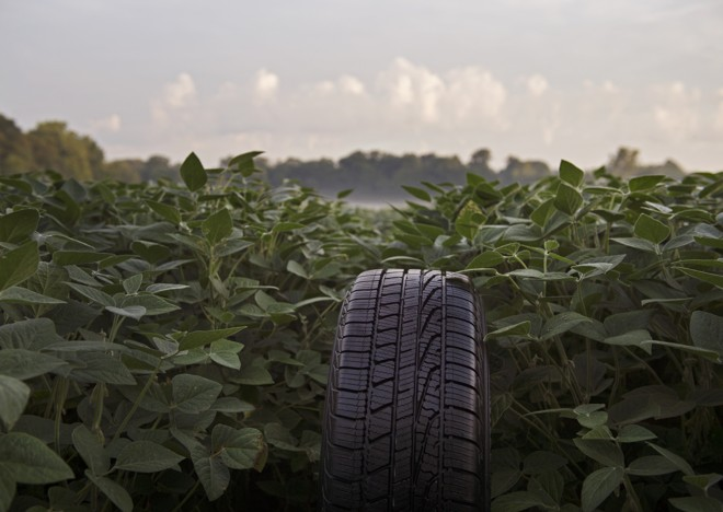 Óleo de soja também diminui o  o consumo de energia na fabricação dos pneus | Divulgação/Goodyear