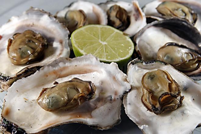 Essas toxinas são estáveis e não são degradadas com o cozimento ou processamento dos moluscos. | Albari Rosa/Gazeta do Povo