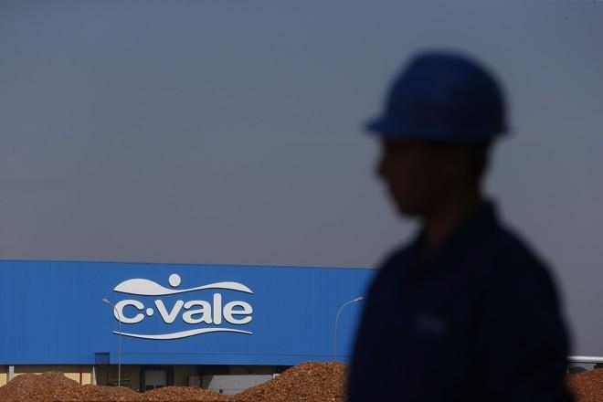 A indústria terá 10.012 metros quadrados e segundo o presidente da C.Vale, Alfredo Lang, será a maior e mais moderna do país. | Albari Rosa/Gazeta do Povo