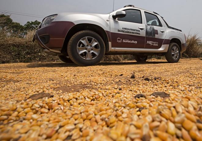 Mato Grosso possui tanto milho que o grão é encontrando literalmente no chão da BR163 | JONATHAN CAMPOS/GAZETA DO POVO