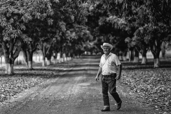 Suinocultor Algeu Uggeri, de Nova Mutum (MT) | Jonathan Campos/Gazeta do Povo
