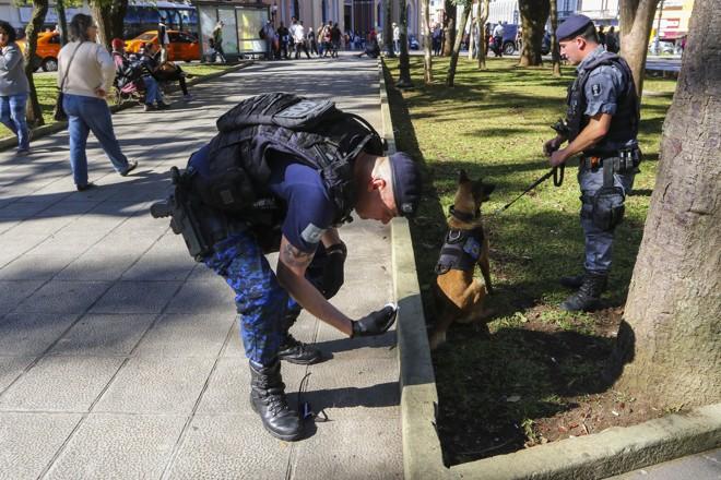Guardas Municipais encontraram poucas gramas de maconha escondidas nas praças. | Daniel Castellano SMCS/SMCS