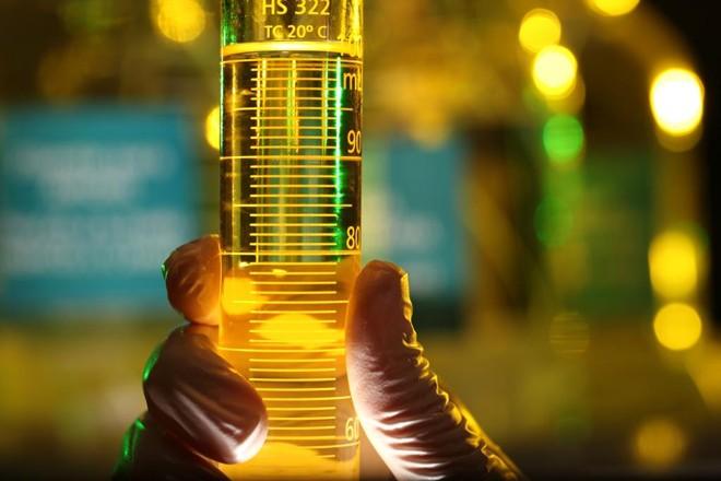 Exxon já investiu US$ 8 bilhões  em pesquisas de energias renováveis | André Valentim/ Agência Petrobras