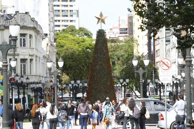 Árvore de Natal no Centro de Curitiba é feita com 5 mil flores da espécie sálvia vermelha. | Aniele Nascimento/Gazeta do Povo