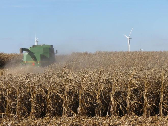 EUA venderam mais de US$ 140 bi em produtos agrícolas em 2017