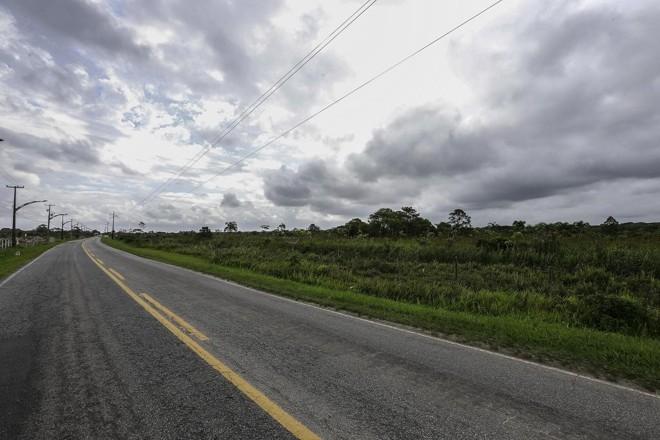 A mata atlântica ao lado da PR-412, em Pontal do Paraná: nova Faixa pode consumir 175 metros de floresta preservada | Jonathan Campos/Gazeta do Povo