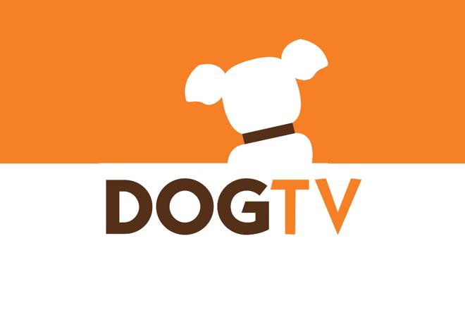 Discovery lança canal de TV exclusivo para cães no Brasil