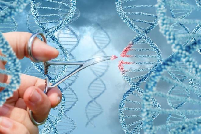 Ferramenta permite tanto eliminar características indesejadas quanto inserir  mutações específicas | Bigstock/