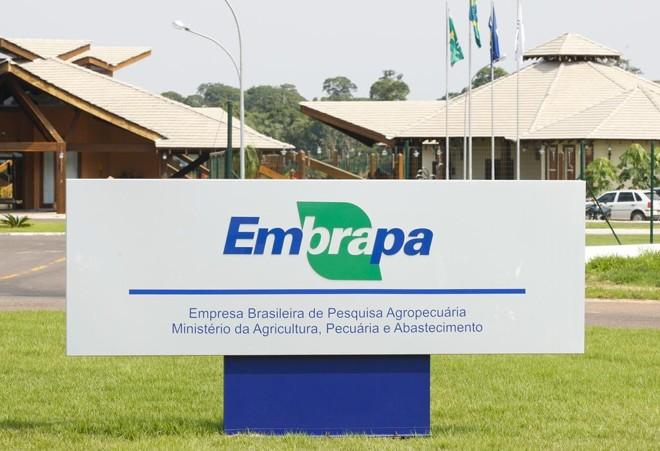 Dependência do Tesouro: 98% de todos os gastos da Embrapa são destinados a pagamento de pessoal e despesas correntes. | Hugo Harada/Gazeta do Povo