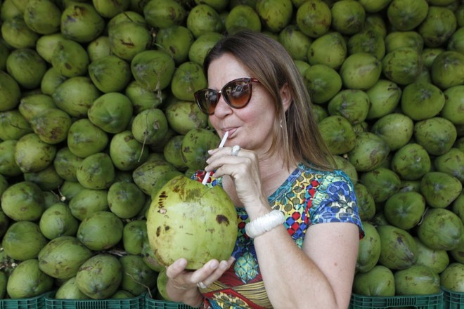 Produtores e pesquisadores ainda tentam encontrar uma variedade de coco que se adapte às condições paranaenses | Daniel Caron/Gazeta do Povo