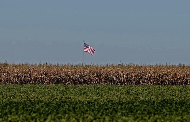 Estados Unidos devem produzir e exportar menos grãos nesta safra, abrindo uma nova janela de mercado para o Brasil. | ALBARI ROSA/GAZETA DO POVO