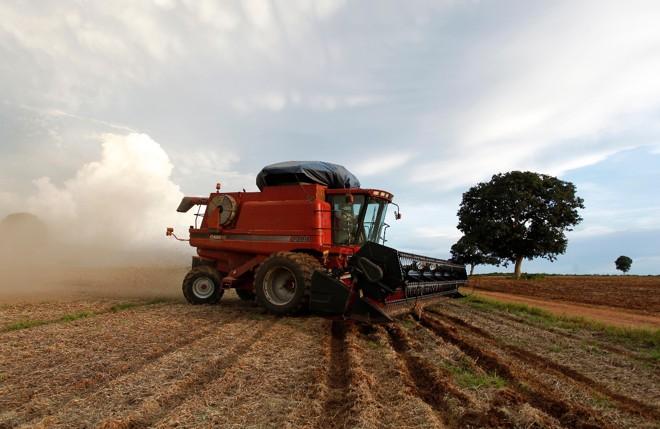 No Matopiba, ocupação territorial é dominada pela pecuária na proporção de 70% contra 30% das lavouras, mas a balança vem pendendo cada vez mais para o lado dos grãos | Daniel Caron/Gazeta do Povo