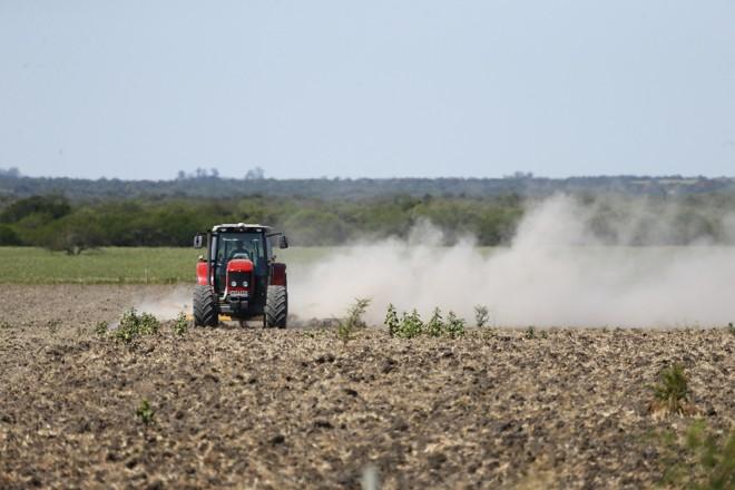 Falta de chuvas afligiu mais de um milhão de hectares | Jonathan Campos/Gazeta do Povo
