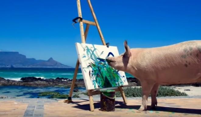 A porca 'Pigcasso': quadros vendidos por mil euros | Reprodução/YouTube