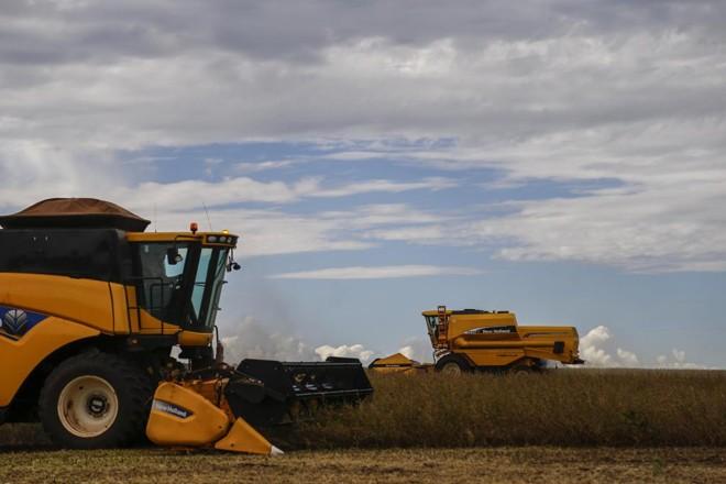 As três principais lavouras de grãos do país arroz, milho e soja representarão 92,9% da produção | Jonathan Campos/Gazeta do Povo