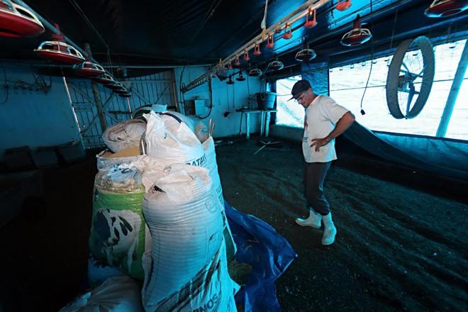 Produtor de Carambeí, que fornece para uma das unidades que teve exportações suspensas:mercado espera que países compradores continuem a cobrar explicações | Albari Rosa/Gazeta do Povo