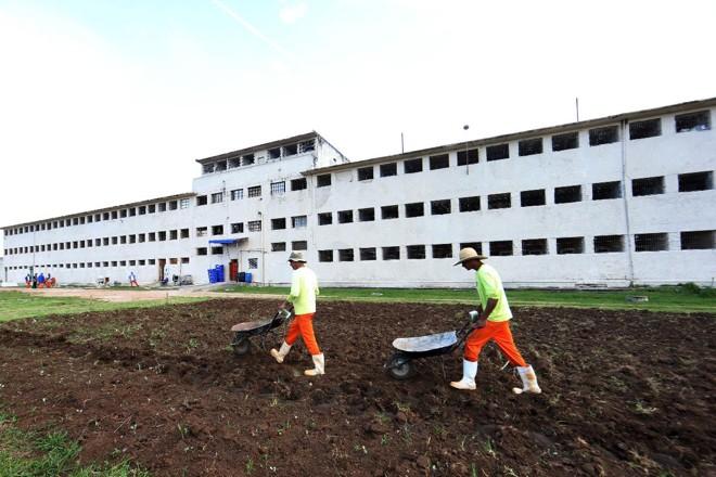 Presos cuidam da hora daUnidade de Progressão do Complexo Penitenciário de Piraquara, na Região Metropolitana de Curitiba (RMC). | Albari Rosa/Gazeta do Povo