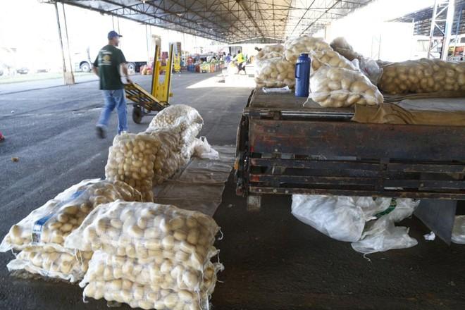 No Ceasa, vazio, preço do saco de batata passou de R$ 80, na segunda, para  R$ 150 na quinta-feira | Aniele Nascimento/Gazeta do Povo