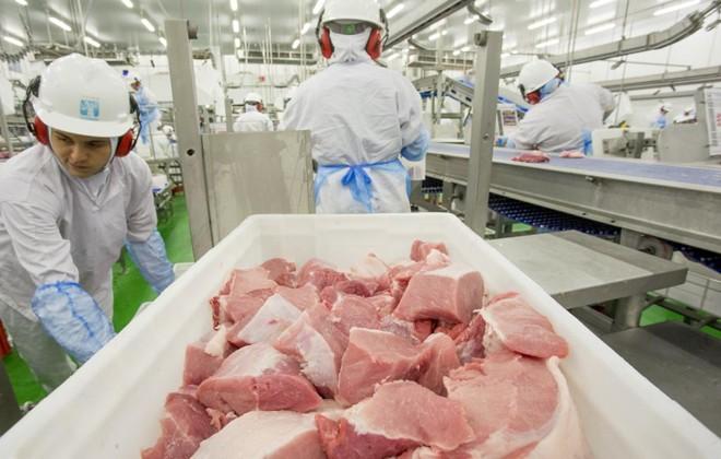 Produção de carne no Brasil está comprometida devido à greve dos caminhoneiros | Hugo Harada/Gazeta do Povo