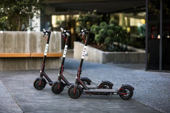 Patinetes da Bird vão revolucionar a mobilidade urbana da mesma forma que fez a Uber? Improvável | Bird Divulgação
