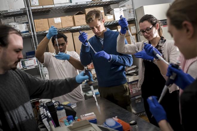 Estudantes no laboratório Genspace, em Nova York  
