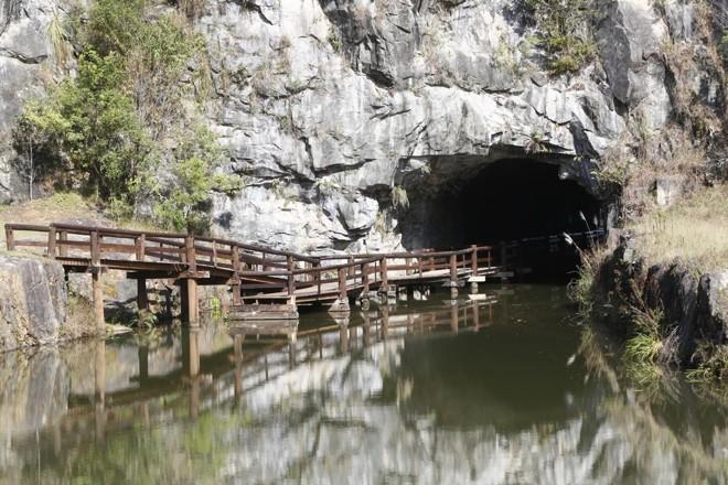 Visitas agendadas ao túnel no Parque Tanguá começam dia 7 de julho. | Aniele Nascimento/Gazeta do Povo