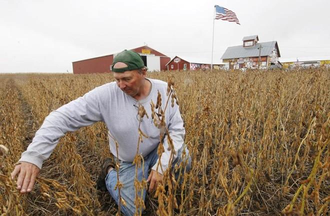 Produtor de soja dos Estados Unidos:medida do governo chinês irá sobretaxar a soja norte-americana a partir de julho | JONATHAN CAMPOS/GAZETA DO POVO