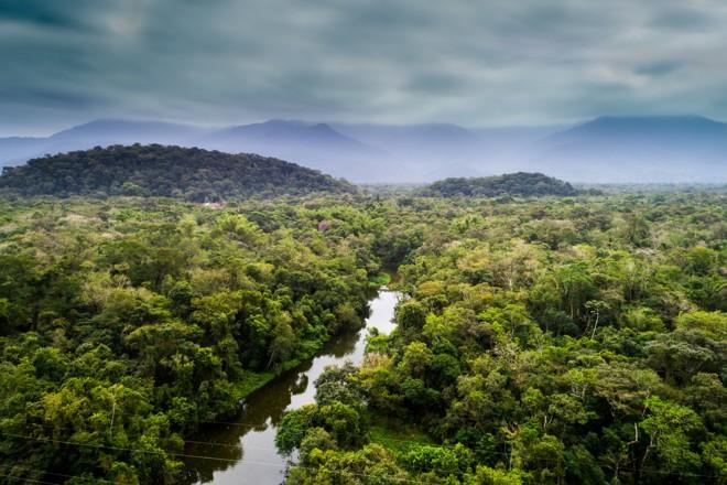 Perda temporária de matéria verde por causa de seca provocada pelo El Niño cobre área equivalente a Pernambuco | BigStock/