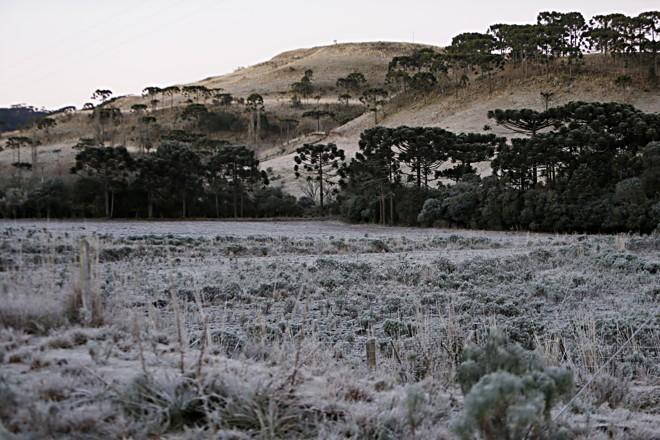 Geada na serra:regiões mais altas devem ser mais afetadas pelo fenômeno climático no Paraná | Albari Rosa/Gazeta do Povo