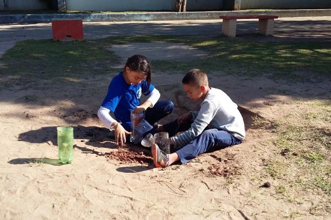 Das salas ao jardim da escola: alunos aprendem na prática sobre os diferentes tipos de solo |
