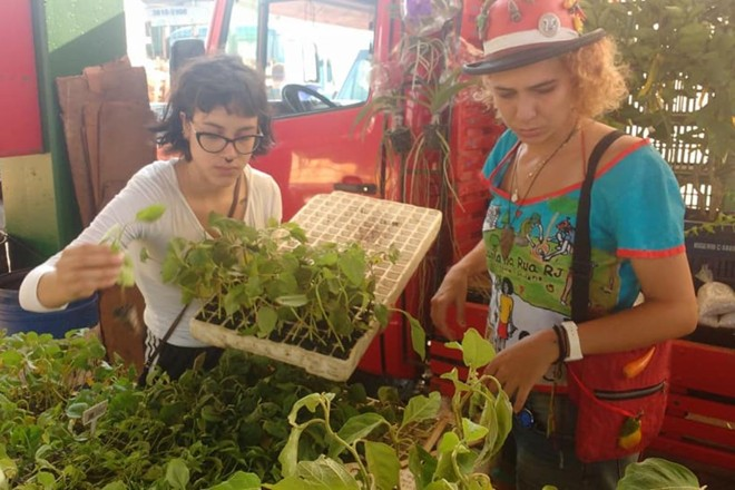 Gabi Flor (à direita) trabalhando na distribuição gratuita de mudas, uma das ações do Planta na Rua RJ | Reprodução/Facebook/ Planta na Rua RJ