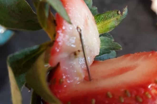 Foram reportados mais de 30 casos de consumidores que encontraram agulhas escondidas dentro de morangos. | Reprodução/