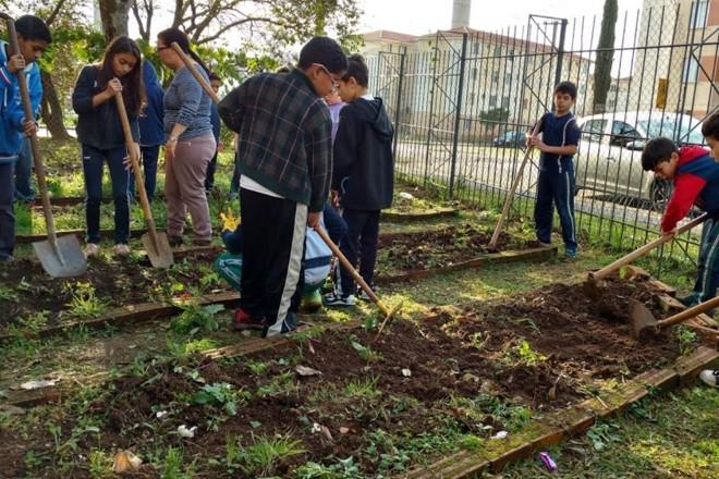Uma das atividades dos alunos da escola Paulo Freire foi o plantio da horta da unidade |