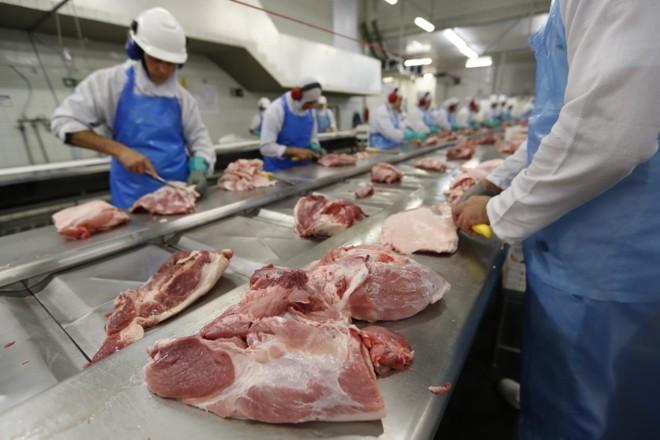 diversificação e ampliação da linha de produção é uma das apostas da cooperativa Sananduva para ampliar mercado | Jonathan Campos/Gazeta do Povo