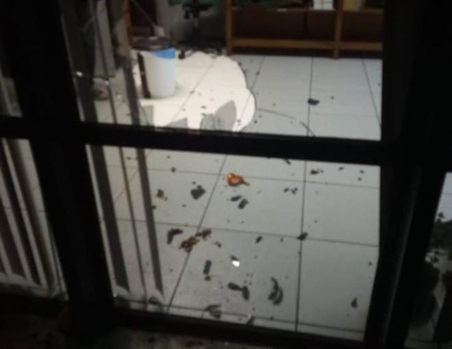Além da agressão, biblioteca da UFPR  teve vidros quebrados | Foto: DCE/Reprodução