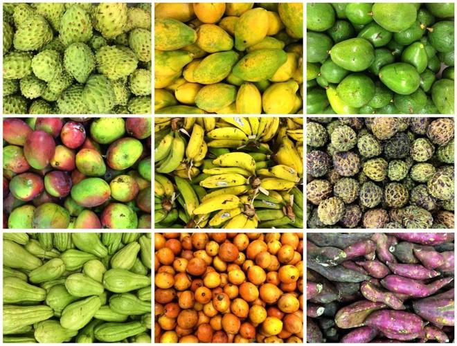 Nos últimos anos, o Brasil se transformou no 3.º maior produtor de frutas do mundo, superado apenas por China e Índia. | Arquivo/Gazeta doPovo