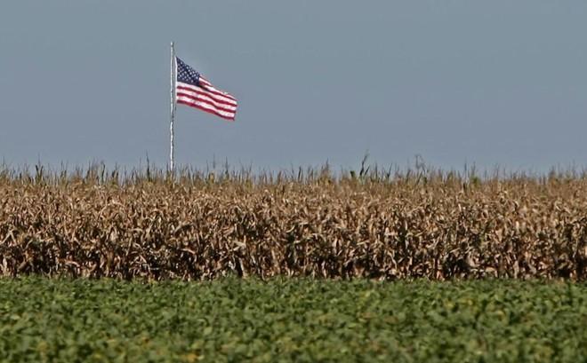 Depois de meses de notícias ruins, os fazendeiros americanos finalmente podem respirar um pouco mais aliviados.   ALBARI ROSA/Gazeta do Povo