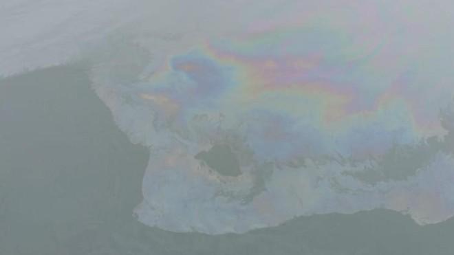 Segundo IAP, não há mais óleo na praia de Brasília   Felipe Andrews/
