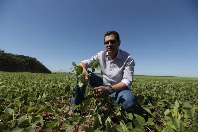 Everaldo Jorge dos Reis em área arrendada no Mato Grosso do Sul | Fernando Zequinão/Gazeta do Povo