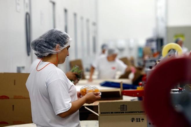 Trabalhadores em fábrica de Curitiba (PR). | Albari Rosa/Gazeta do Povo