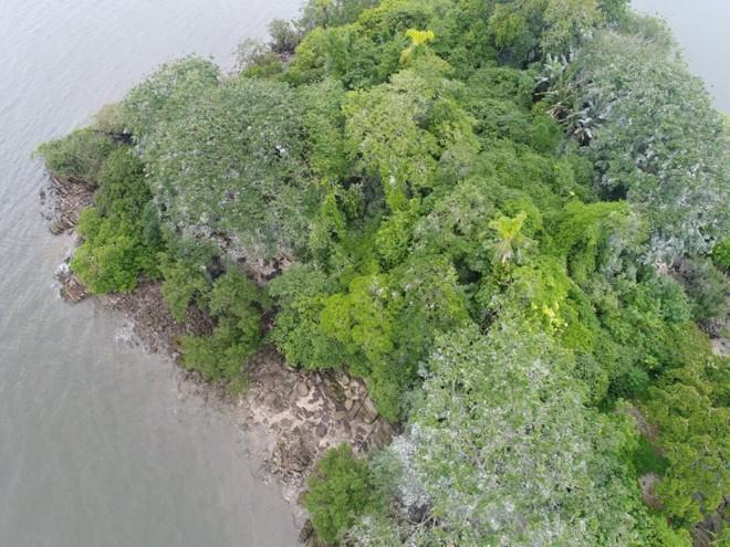 A pequena ilha é praticamente toda formada por um sambaqui, onde vários ossos humanos foram encontrados. | Luciano Augusto Mysczak/Divulgação