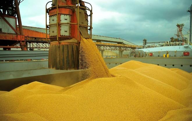 Movimentação de carga de soja no porto de Paranaguá | Ivan Bueno/APPA